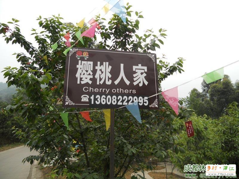 蒲江县光明乡樱桃山