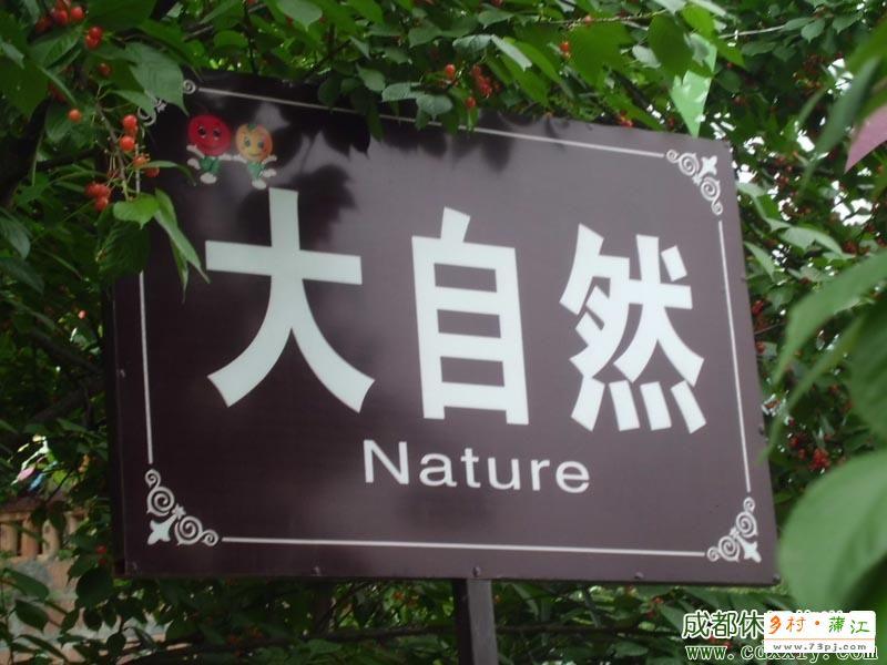 大自然农家乐