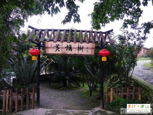成都蒲江县五龙谷