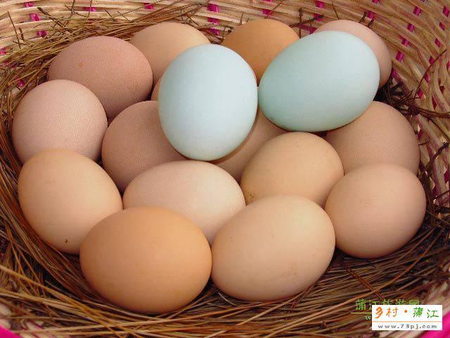 蒲江土鸡蛋-蒲江特产