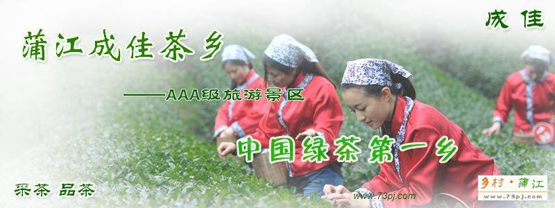 蒲江成佳茶乡AAA级旅游景区