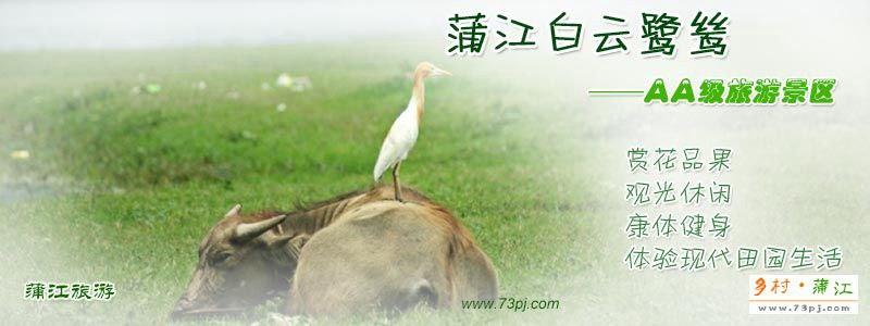 蒲江白云鹭鸶AA级旅游景区